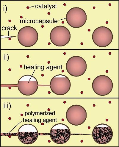 Figura 2: Procesi i vetëshërimit (HowStuffWorks, 2008)
