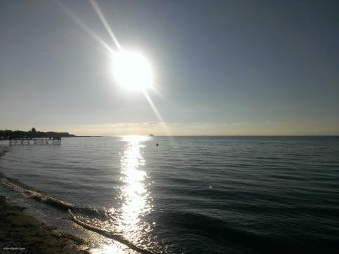 Agim mbi det