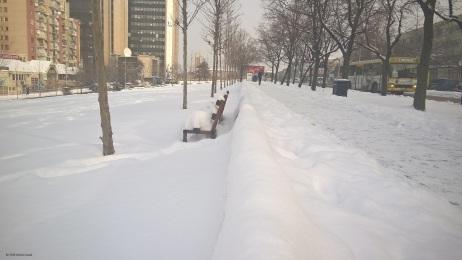 Bora në Prishtinë